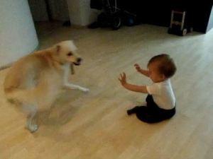 2012-07-10-babys-best-friend