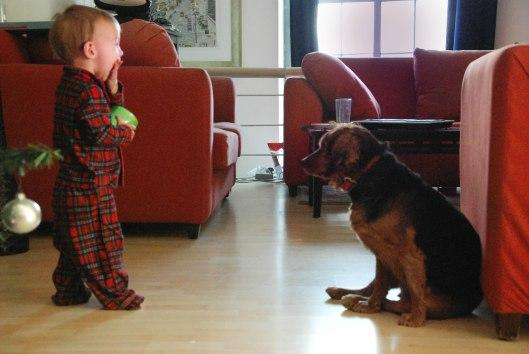2012 12 27 Dexter the Dog Whisperer-1