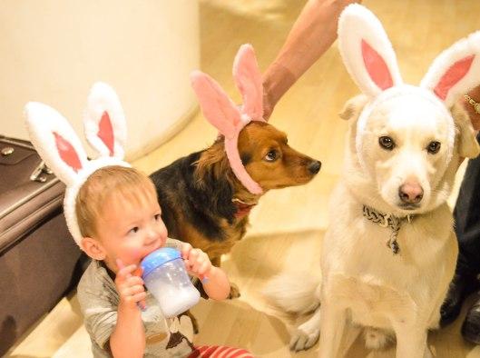 2013 04 12 Bunny Ears-6
