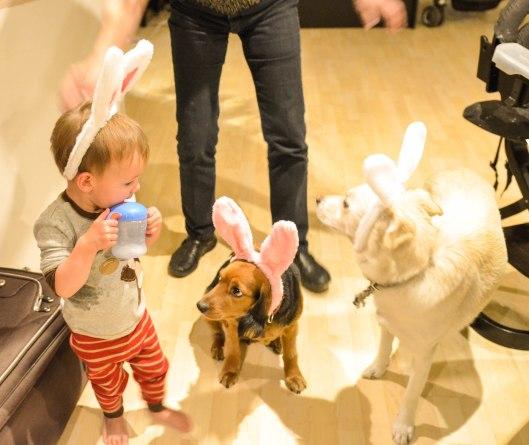 2013 04 12 Bunny Ears-7