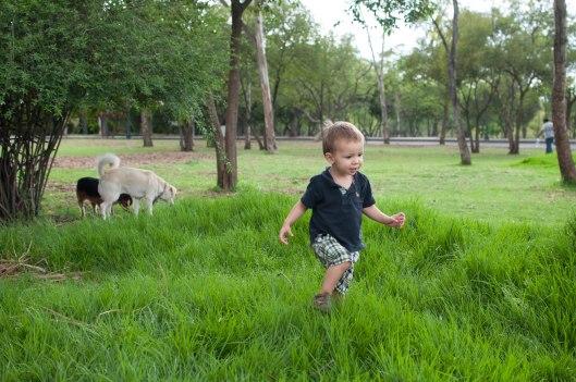 2013 06 14 Grass!-4