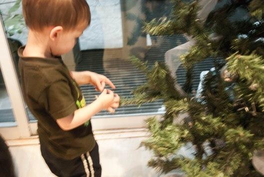 2013 12 06 Tree Helpers-1