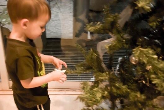 2013 12 06 Tree Helpers-2