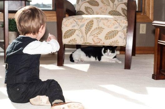 2013 10 28 Dexter, the Cat Hunter-3