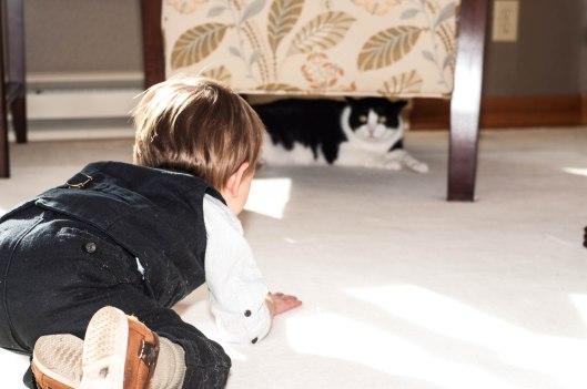 2013 10 28 Dexter, the Cat Hunter-4