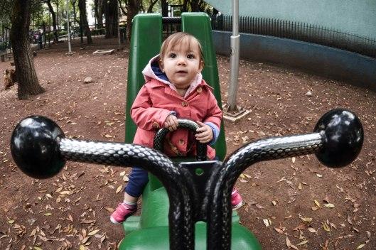 2013 11 15 Progress at the Park-9