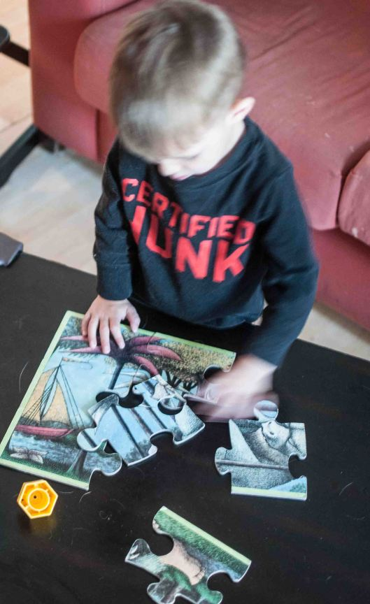 2014 03 22 Puzzles & Books-3