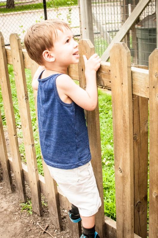 2014 07 13 The Oshkosh Zoo-3