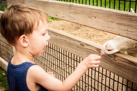 2014 07 13 The Oshkosh Zoo-4