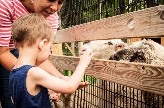 2014 07 13 The Oshkosh Zoo-5