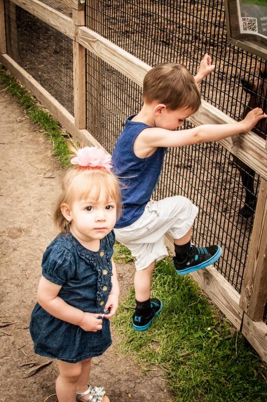 2014 07 13 The Oshkosh Zoo-7