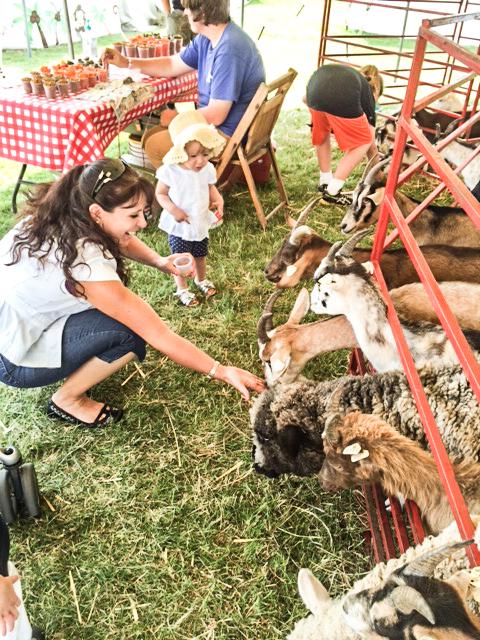 2014 07 16 County Fair-1