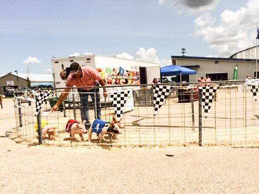 2014 07 16 County Fair-10