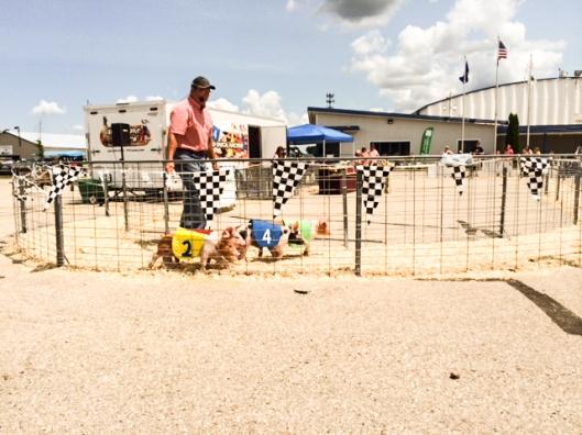 2014 07 16 County Fair-11