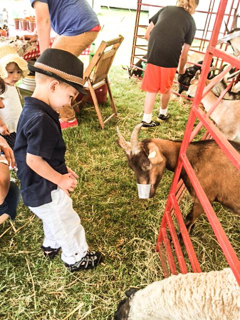 2014 07 16 County Fair-2