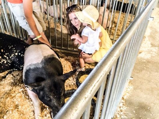 2014 07 16 County Fair-9