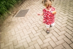 2014 08 21 Out for a Walk-1